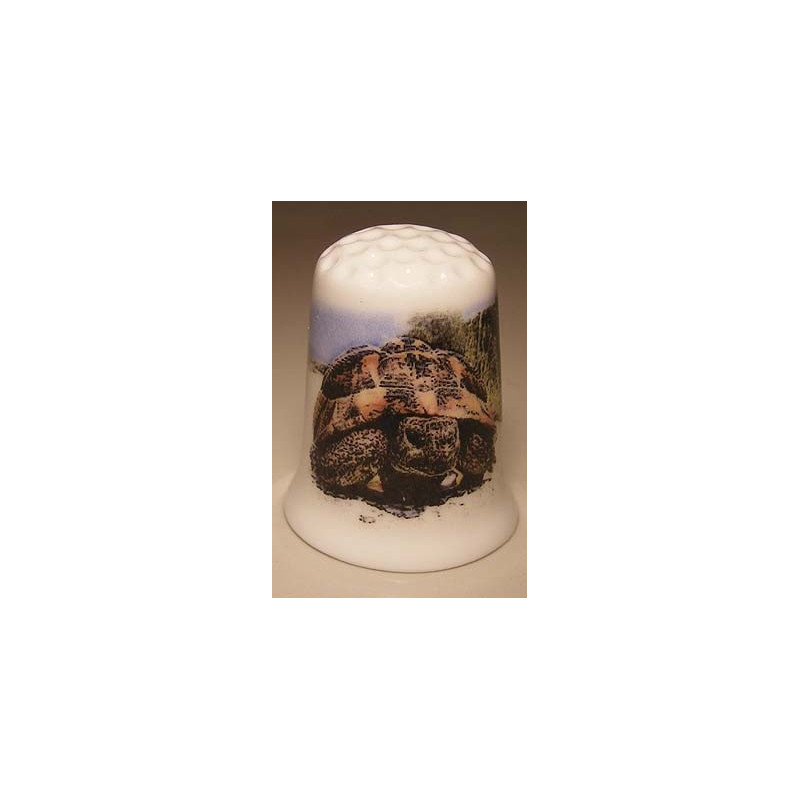beetle car image on a ribbed breakfast plate