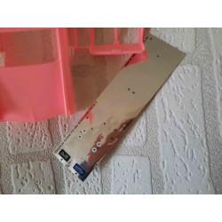 West highland terrier hond in een bloempot