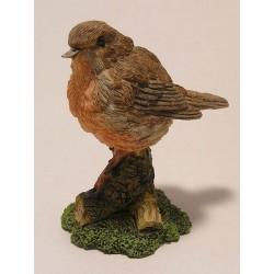 Little robin bird sitting on tree stump