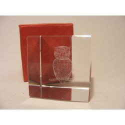 Owl in a crystal glass cube