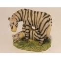 Zebra met jong op het gras