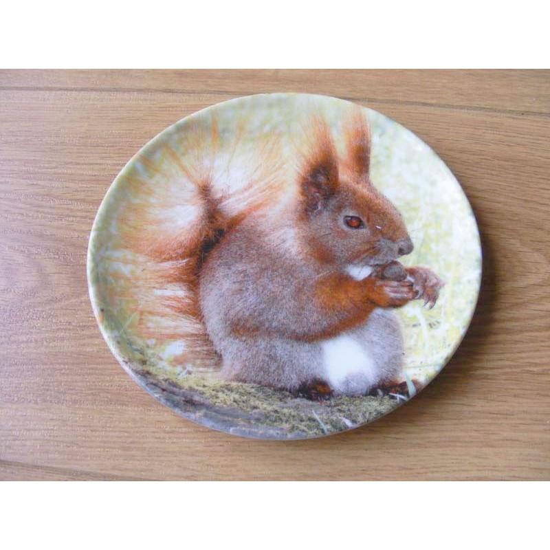 Eekhoorn afbeelding op een wandbord